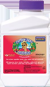 Captain Jack's Deadbug