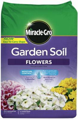 Miracle Gro Flower