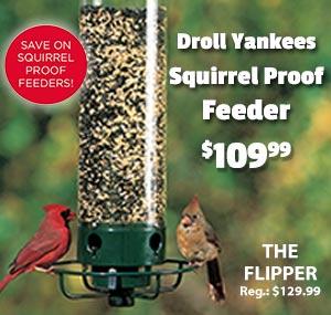 Droll-Yankee-Flipper-Feeder