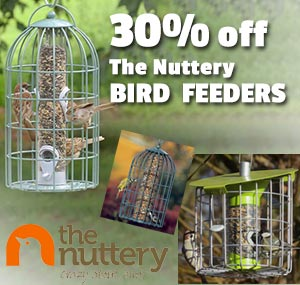 Nuttery-Bird-Feeders